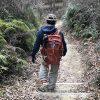 やっぱり欲しい♪久しぶりの山歩きでトレッキングポールの重要性を実感!