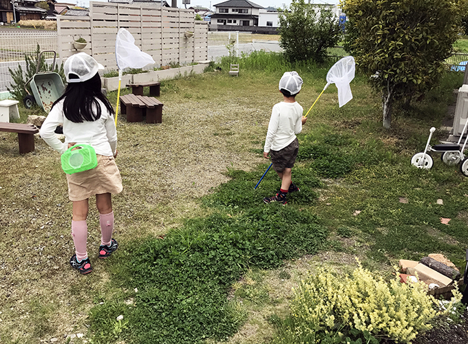 庭で虫採り
