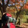 初心者向きの登山コース!家族で有馬富士トレッキングを楽しんできました♪