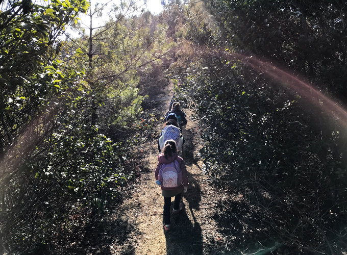 藤ノ木山自然公園 ファミリートレッキング