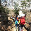 子連れ向きのコースでした!ふんまるファミリートレッキング♪(藤ノ木山自然公園)