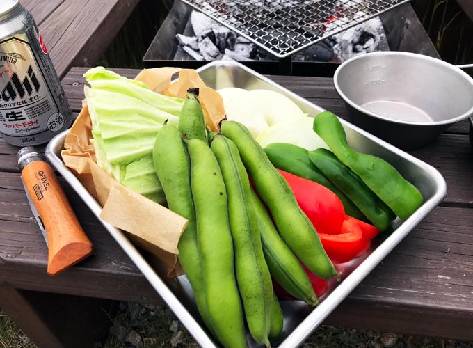 家庭菜園のソラマメ