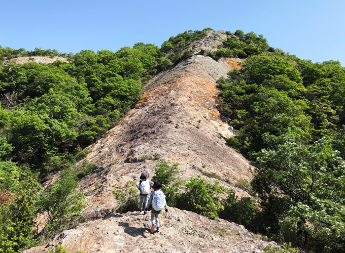 小野アルプス 紅山