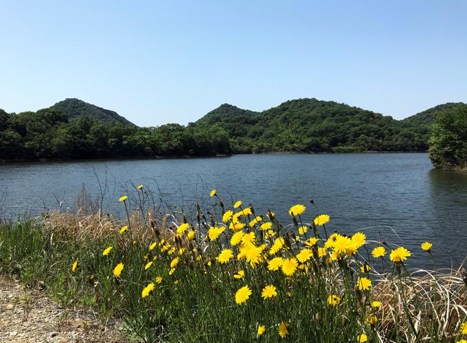 鴨池(小野市)
