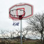 楽しいDIY!単管パイプを使って庭にバスケットゴールを設置しました♪
